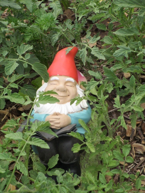 "Zzzzz.... introducing our newest gnome! He has yet to be named. Hula Girl suggested calling him ""Counter"" but I countered. I'm thinking ""Lolly"" might be part of his name."